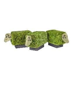 TIM-00007 - Grass Seating - Flock of Sheep x 3 (1)-100