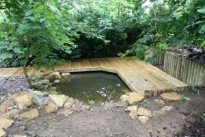 Pond dipping preschool