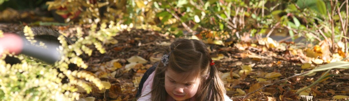 Forest Schools – An Open-Ended Resource